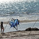 beach and kites by sharon wingard