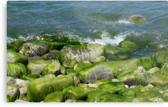 Ocean waves by clockwisedream