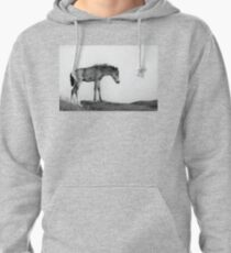 Skinny & Lonely Horse Pullover Hoodie