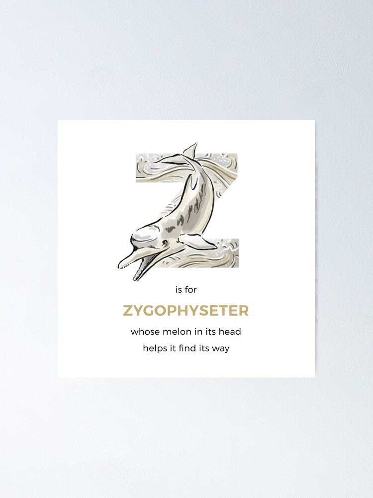 Alternate view of Z is for Zygophyseter Poster