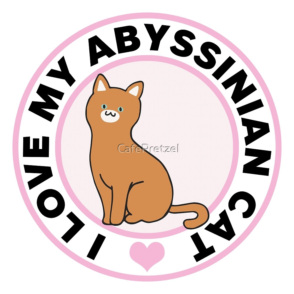Abyssinian Cat Lover T-Shirts by CafePretzel