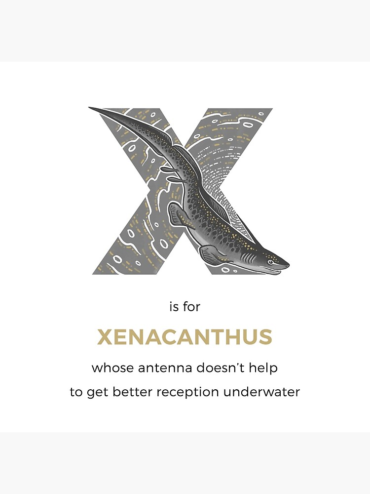 X is for Xenacanthus by franzanth
