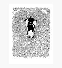 Grizzly - Fineliner Illustration Photographic Print