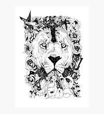 Floral Lion - Fineliner Illustration Photographic Print