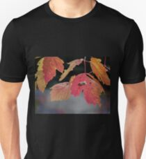 Autumn Foliage in Australia 2 T-Shirt