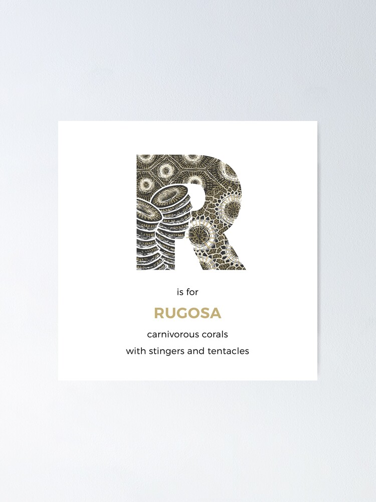 Alternate view of R is for Rugosa Poster