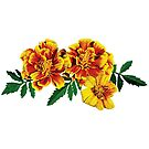 Three French Marigolds by Susan Savad