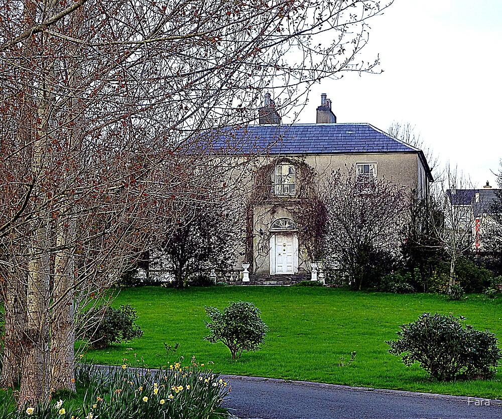 Georgian Manor House by Fara