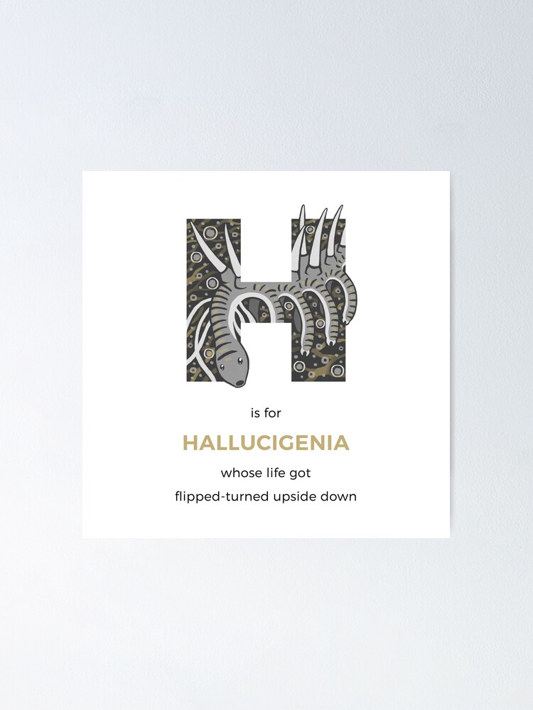 Alternate view of H is for Hallucigenia Poster