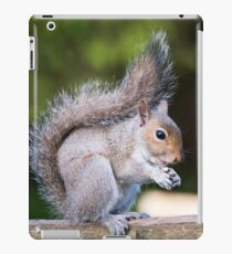 Squirrel On Fence 3 iPad Case/Skin