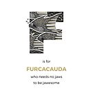 F is for Furcacauda by Franz Anthony