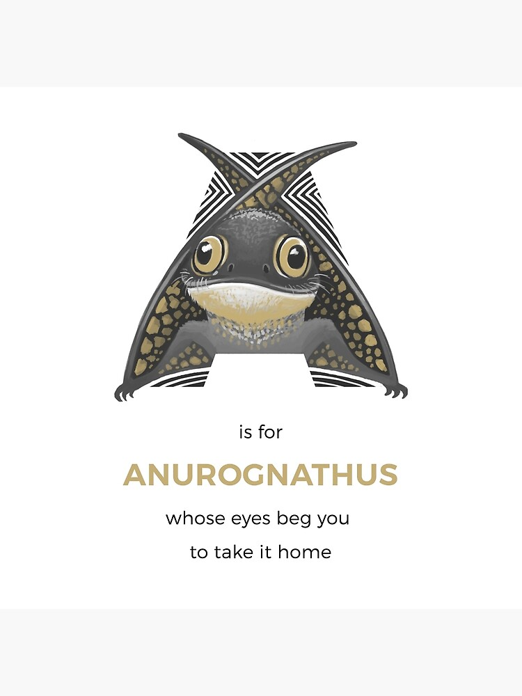 A is for Anurognathus by franzanth