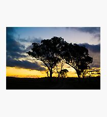Uralla Sunset Photographic Print