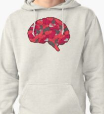 This is your brain...on CATS! Pullover Hoodie