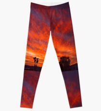 March Sunset Leggings