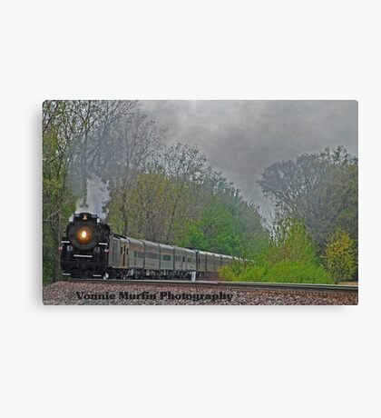 765 train Canvas Print