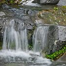 Waterfall on the Paradise River by Jeff Goulden
