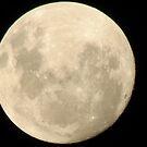 Full moon. by Elizabeth Kendall