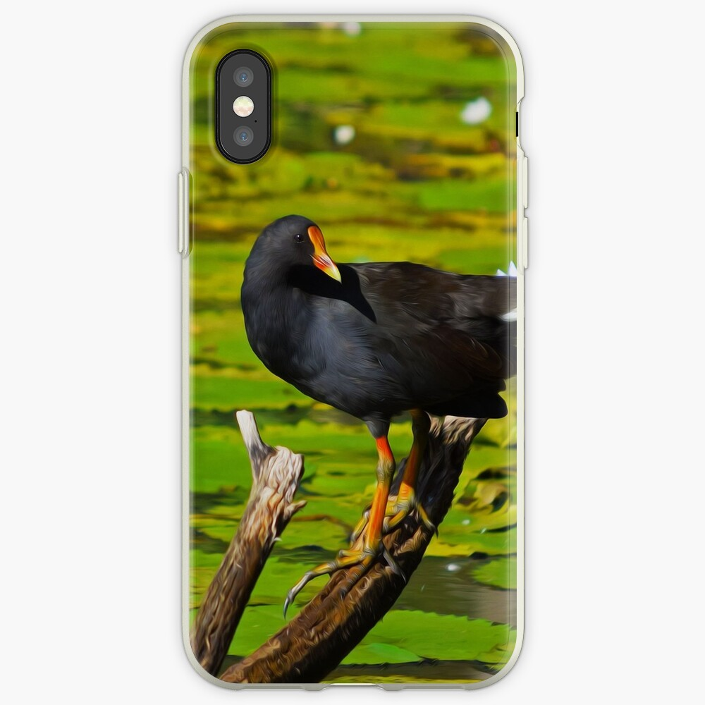 Dusky Moorhen iPhone Case & Cover