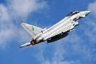 RAF Eurofighter EF-2000 Typhoon by Andrew Harker