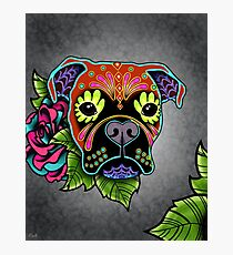 Boxer in Fawn - Day of the Dead Sugar Skull Dog Photographic Print