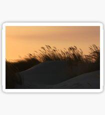 Dune 4232 Sticker