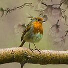 Redbreast Bird by David Dehner