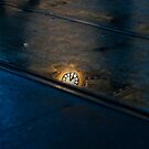 Time Reflecting by Andrew Wilson