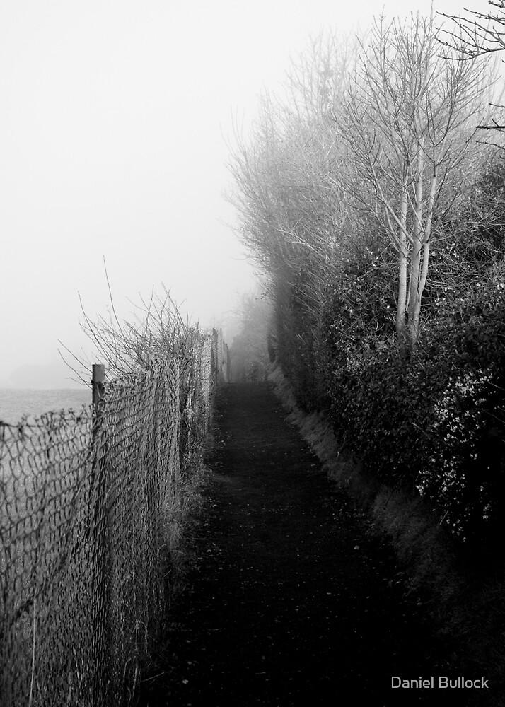 Morning Path by Daniel Bullock