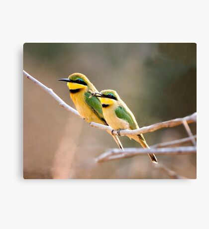 Will You Bee Mine Canvas Print