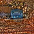 Tunnel Park in Autumn by Kim McClain Gregal