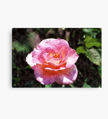 Quite Rosey Canvas Print