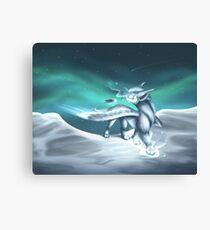cold starlight Canvas Print