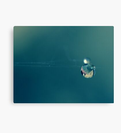 a drop on a spider's web Canvas Print