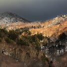 Snow's Coming! Shiga Kogen, Japan Pillow by RDography