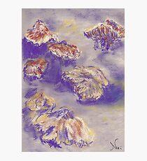 Plein Air Shrooms (pastel) Photographic Print