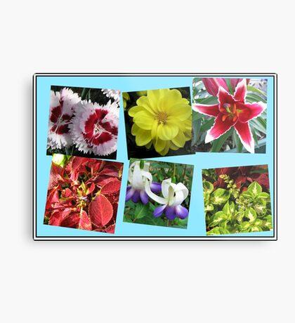 Erinnerungen an Sommerblumencollage Metallbild