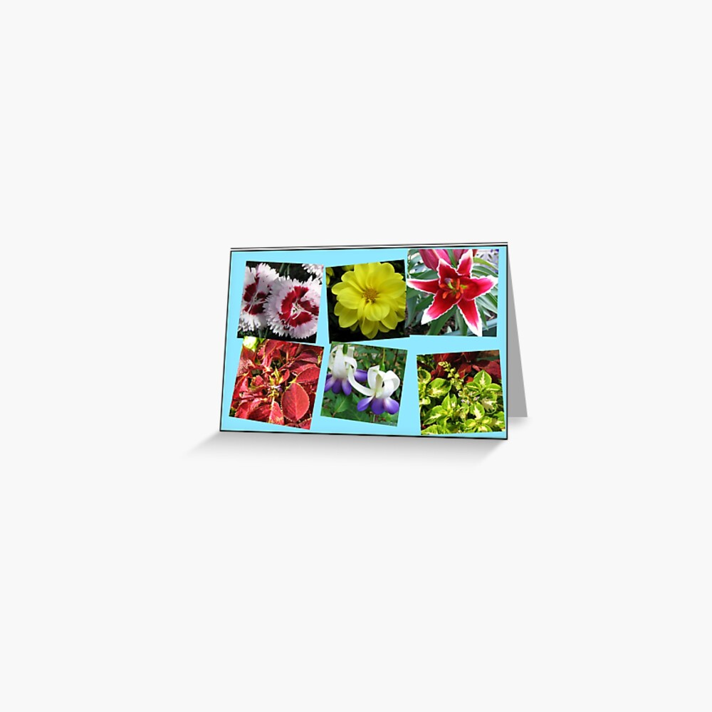 Erinnerungen an Sommerblumencollage Grußkarte