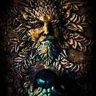 The Stone Sorcerer by Jennifer Rhoades