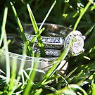 Lost together in the grass by MarthaBurns