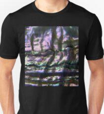Polished haliotis' shell 2 Unisex T-Shirt