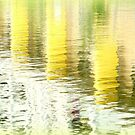 Water colour, yellow by mikeosbornphoto