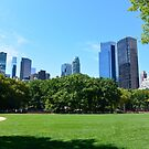 Central Park New-York by Dagoth