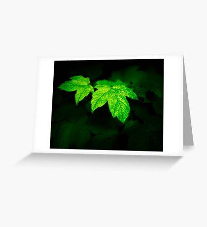 Dark Nature: Glowing Leaves Greeting Card