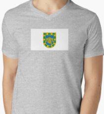 Flag of Mexico City  Men's V-Neck T-Shirt