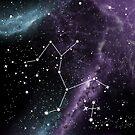 Centaurus & Crux (Southern Cross) by Rachael Raymer