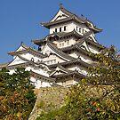 White Egret Castle, Himeji, Japan. by johnrf