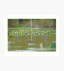 Marsh Waterfowl  Art Print