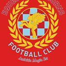 Equestria Alicorns Football Club by Rachael Raymer