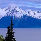 Anchorage Mountains by Elizabeth  Lilja